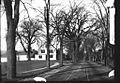 Court Street, with trolley tracks (9630013942).jpg