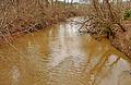 Crabtree Creek.jpg