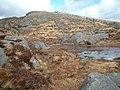 Craignaw slopes - geograph.org.uk - 144551.jpg