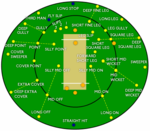 Cricket positions.png