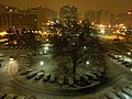 Crystal City Snow - Nighttime Balcony View (4198303961).jpg