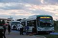 DRT 8501 bus 15008739417.jpg