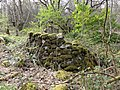DSC06295 Fraga da Marronda, Alto Eo, Lugo, Galicia.jpg