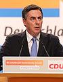 David McAllister CDU Parteitag 2014 by Olaf Kosinsky-11.jpg