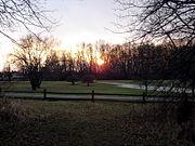 Deer grove sunset