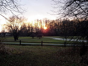 Deer grove sunset.jpg