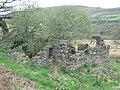 Derelict near Mynydd Garn-Fach - geograph.org.uk - 166975.jpg
