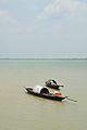 Desi Boats - River Padma - Paturia-Daulatdia - 2015-06-01 - 2831.JPG