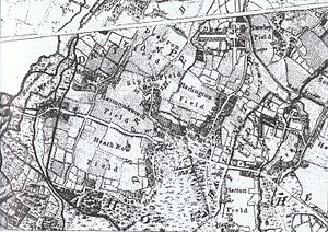 Harmondsworth - Detail of A Map of the County of Middlesex Reduced from the an Actual Survey in four Sheets By John Rocque or Carte de la Province de Middlesex reduite D'apres un arpanlage en quatre feuilles Par Jean Rocque, 1757.