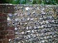 Detail old flint wall at Nepcote.JPG