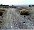 Dirt track at Five Mile Pass, Utah.jpg
