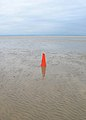 Discarded Traffic Cone, Romney Sands - geograph.org.uk - 445413.jpg