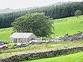 Diwrnod Cneifio. Sheep shearing at Cae'r Defaid - geograph.org.uk - 546555.jpg
