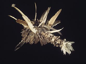 Pomo - Doctor's Headdress (guk-tsu-shua), Pomo (Native American), 1906-1907, Brooklyn Museum