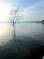 Dojran Lake 184.jpg