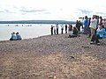 Dolphin watchers at Chanonry Point - geograph.org.uk - 866717.jpg