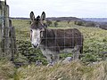 Donkey, Kilgarrow - geograph.org.uk - 1167897.jpg