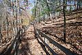 Douthat State Park trails (12524331254).jpg