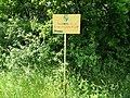 Dovhorakivskyi Botanical Reserve (2019.05.26) 15.jpg