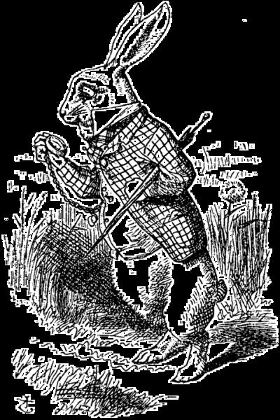 Alice adventures in wonderland 1865 pdf writer