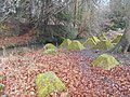 Dragon's Teeth, Waverley Abbey 02.jpg