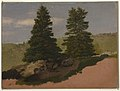 Drawing, New England Landscape (Two Pine Trees), 1850 (CH 18200345).jpg