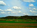 Driftless Area - panoramio (5).jpg