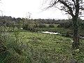 Drumbargy Townland - geograph.org.uk - 1044485.jpg