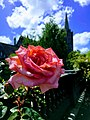 Dublin - St Patrick's Cathedral - 20170610144942.jpg