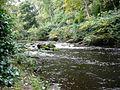 Edinburgh - Water of Leith - Waterflow (2962390360).jpg