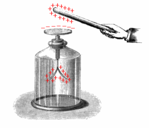 Electrostatic induction - Gold-leaf electroscope, showing induction, before the terminal is grounded.