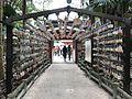 Emas in Aoshima Shrine.jpg