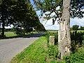 Emmerich am Rhein Borghees Grenzstein am Hassentweg PM1901.jpg