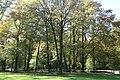 Englischer Garten Herbst-13.jpg
