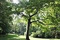 Englischer Garten Muenchen.jpg