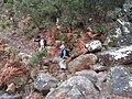 Esclarecidas - Arroyo de la Fuensanta - panoramio.jpg