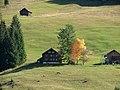 Esel auf der Weide - panoramio.jpg