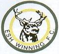 Esh Winning Badge.JPG