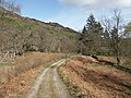 Estate track approaching Whitehouse of Dunira, Perthshire - geograph.org.uk - 1579424.jpg