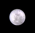 Europa - March 4 1979 (33892694743).jpg