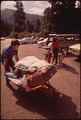 FAMILY HEADS FOR CAMPGROUND AT OSWALD WEST. ALL CAMPERS MUST LEAVE CARS IN LOT, STATE SUPPLIES WHEELBARROWS FOR... - NARA - 545225.tif