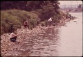 FISHING ALONG AN INLET NEAR SENECA CREEK, NORTHEAST OF BALTIMORE - NARA - 546803.tif