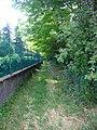 Faleggia 06-2009 - panoramio - adirricor.jpg