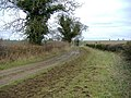 Farm track - geograph.org.uk - 326684.jpg