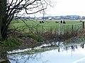 Farmland by Lathones - geograph.org.uk - 86940.jpg