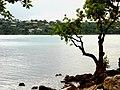 Fatumaru Bay - panoramio.jpg