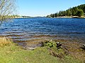 Fernworthy Forest ^ Reservoir - April 2015 - panoramio.jpg