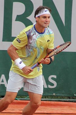Image illustrative de l'article David Ferrer