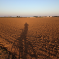 Field-shadow-bike.png