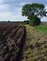 Field edge near Swine - geograph.org.uk - 963296.jpg